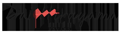 価値ある写真・動画を提供|フォトグラファー平山大【合同会社PSV】のロゴ